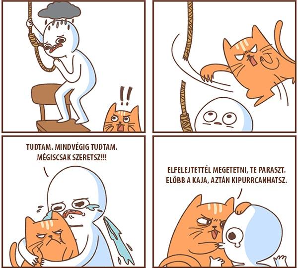 macskajpg.jpg