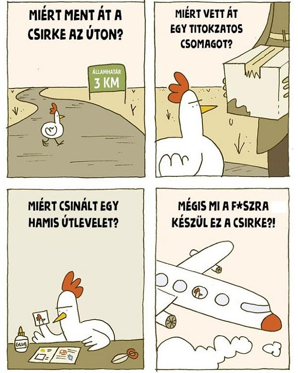 Mire_keszul_ez_a_csirke.jpg