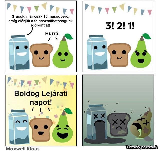 lejarati_nap.jpg