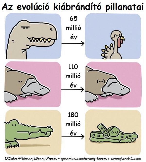evolucio_kiabrandito_pillanatai.jpg