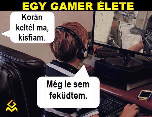 egy_gamer_elete.jpg