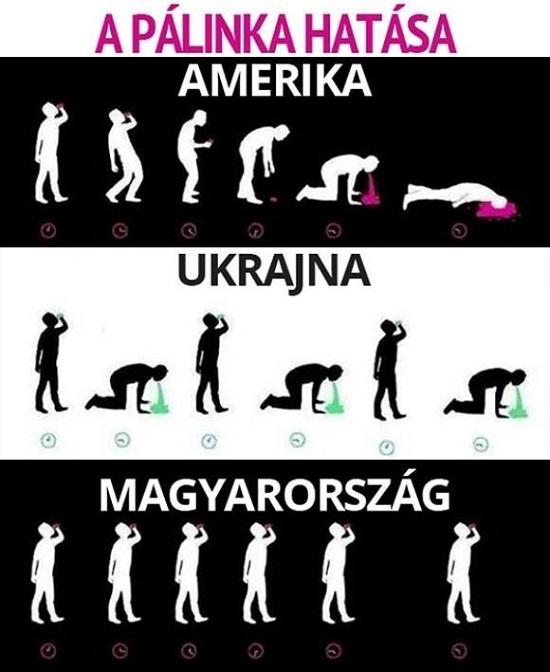 palinka_hatasa_rank_es_a_kulfoldiekre.jpg