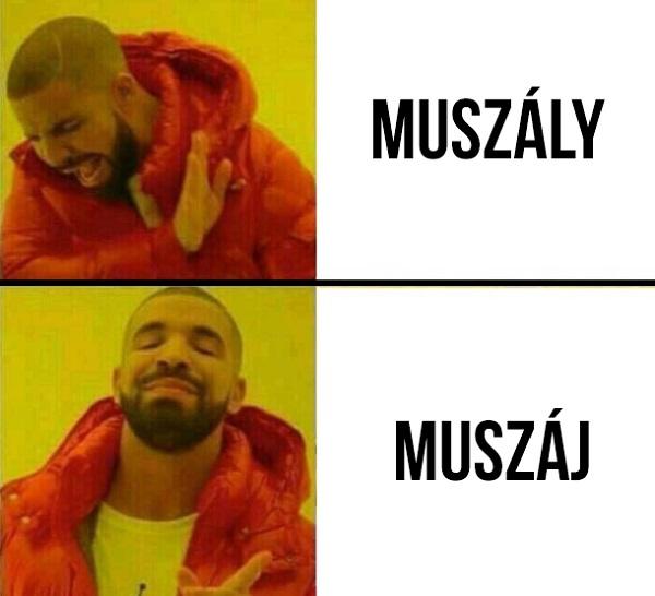 muszaj_vagy_muszaly.jpg