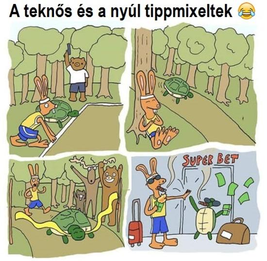 a_teknos_es_a_nyul.jpg