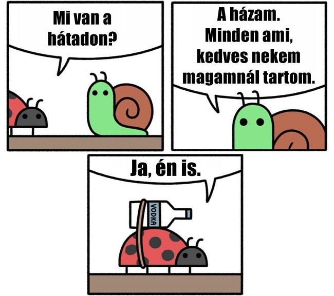 mi_van_a_hatadon.jpg
