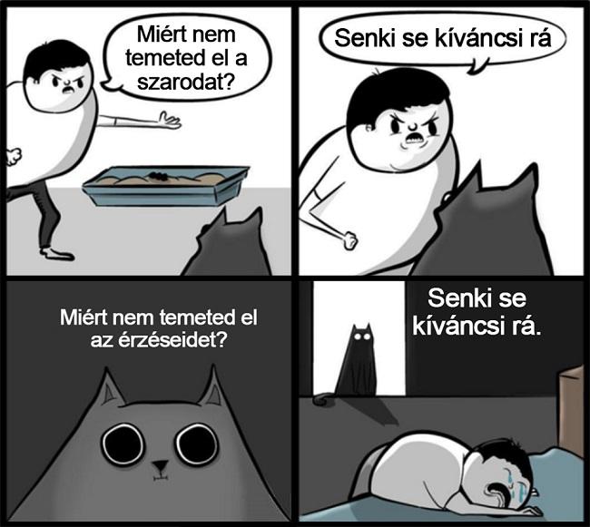 kegyetlen_macska.jpg