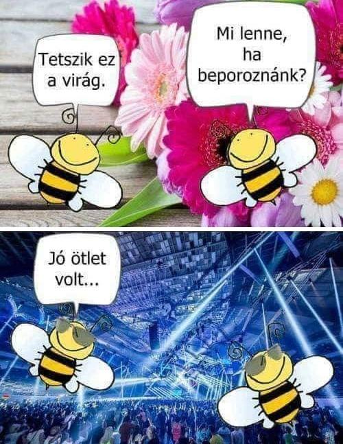 beporoz.jpg