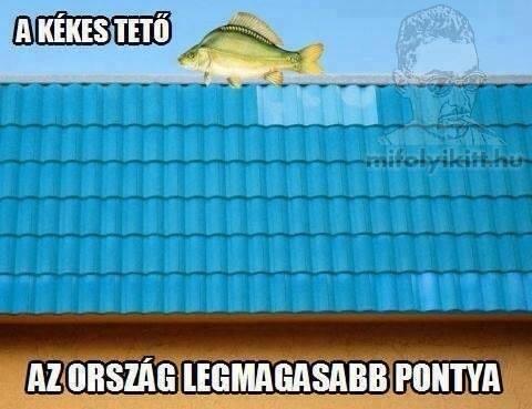 kekes_480x369_watermarked_30182726014.jpg