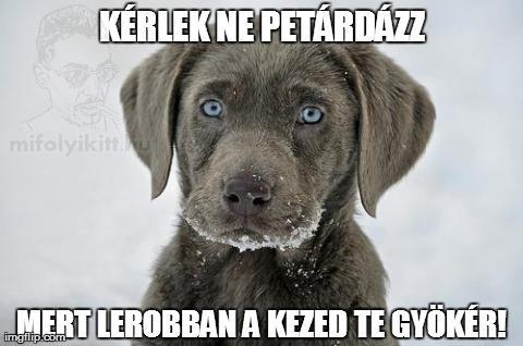 petargyok_watermarked_26185253056.jpg