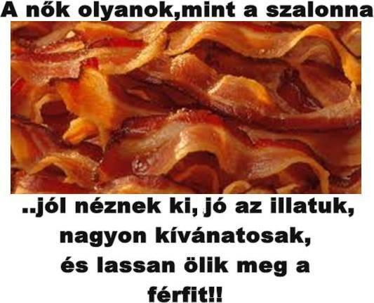 szalonnanok_17210303782.jpg